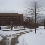 Plant and Soil Science Bldg - MSU